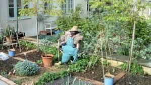efficient vegetable garden design with decorative garden design