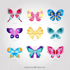 colorful butterfly collection vector free
