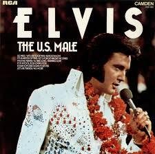 elvis the u s uk vinyl lp album lp record 238699