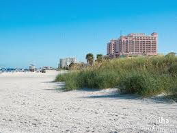 clearwater beach rentals in a house for your vacations with iha