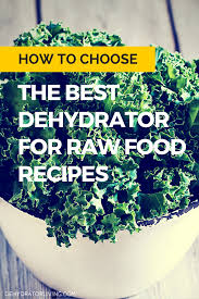 how to choose the best dehydrator for raw food recipes