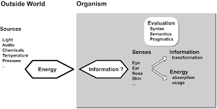 information free full text on semantic information in nature