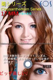 eos chrysanthemum blue contact lens pair 213b 29 99