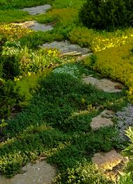 Rock Garden Steps by Kentucky Native Plant And Wildlife Rock Gardens A Great Zen