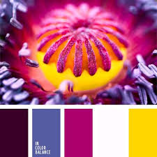 Colors That Match With Purple Best 25 Color Violeta Ideas On Pinterest Paredes De Habitación