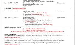 Ssis Developer Resume Sample by Net Developer Resume Template Resumedoc