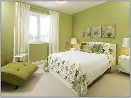 what paint colors go with green carpet carpet vidalondon