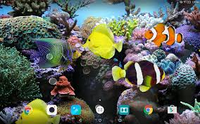halloween fish background coral fish 3d live wallpaper android apps on google play