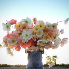 flower delivery cheap melbourne online flower gift delivery cheap daily flowers