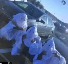 Klux Klan Halloween Costume Wiregrass Ranch Students Face Suspension Wearing Klan