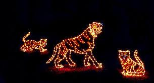 Washington Dc Zoo Lights Zoolights At The National Zoo U2014 Prince George U0027s Suite
