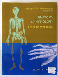 Anatomy And Physiology Coloring Workbook Cells And Tissues Answers Anatomy And Physiology Coloring Pages Anatomy And Physiology