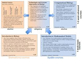 sysbio courses u2013 interdisciplinary phd program systems biology
