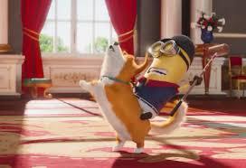 The Queen S Corgis by Corgi Steed In The New Minions Movie Corgi