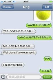 Memes For Iphone Texts - image 455902 texts from dog know your meme