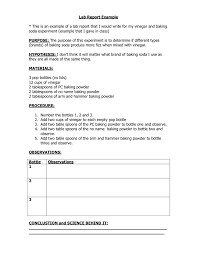 Physics Lab Report Template  formal example college formal  ib     Schoolly D Image titled Write a Biology Lab Report Step
