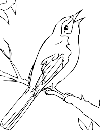mockingbird coloring page eson me
