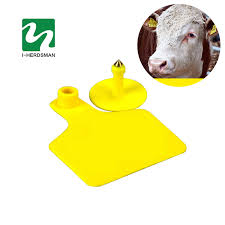 cow tag earrings 50pc milch cow cattle ear tag signs without word ear laser typing
