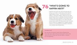 dog body language 100 ways to read their signals trevor warner