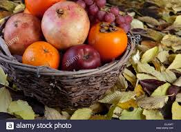 old basket fruit bowl with autumn fruits isolated over black stock