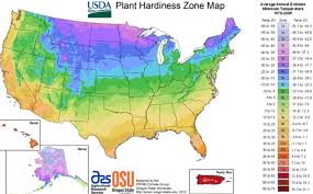 new usda plant hardiness zones anne of green gardens
