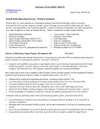 Program Manager Sample Resume by Sample Resume For Digital Marketing Manager Free Resume Example