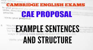 cae proposal structure u0026 example sentences st george international