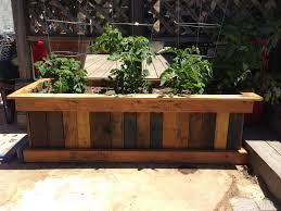 pallet planter box and organic heirloom tomatoes home u0026 garden
