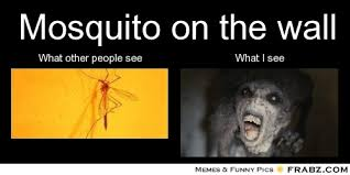 Mosquito Memes - mosquitoes what i see vs what other people see silly mosquito
