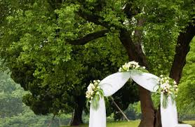 wedding arches decorated with tulle tulle swags w silk flowers http images dexknows cms wedding