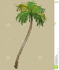 cartoon bent coconut tree without coconuts stock vector image