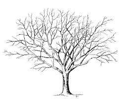 3 tree clipart black and white clip library