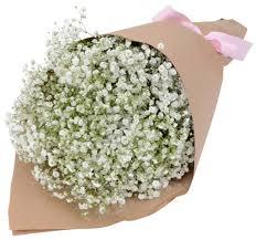 Baby Breath Flowers Stylish Baby Breah Bouquet Gift Flowers Hk