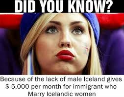 Iceland Meme - to iceland meme by paradoxcy memedroid