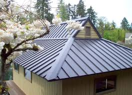metal roof types smalltowndjs com metal roofs pinterest