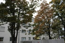 Ermstalklinik Bad Urach Wohnungen Zum Verkauf Landkreis Reutlingen Mapio Net