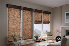 Vinyl Mini Blinds Lowes Interiors Design Awesome Lowes Window Drapes Cellular Shades