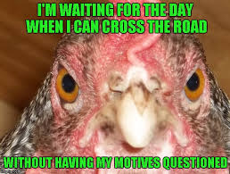 Funny Chicken Memes - why do you cross the road imgflip