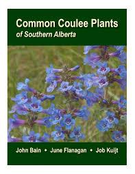native plants alberta june flanagan u2013 botanist environmental horticulturist author