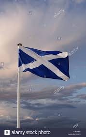 the scottish flag stock photo royalty free image 37246917 alamy