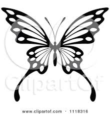 butterfly pattern and white butterfly design 7 by