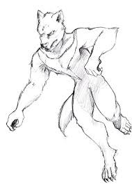 tasmanian devil sketch by jim cacciabando jr on deviantart