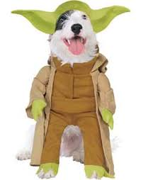 Halloween Costumes Husky Dog Buy Funny Dog Costumes Cute Puppy Costumes Guaranteed