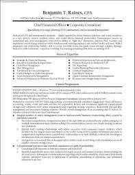 Sample Cfo Resume by Sample Resume Cfo Resume Cv Cover Letter It Engineering Sample