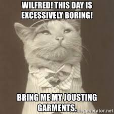 Wilfred Meme - wilfred this day is excessively boring bring me my jousting