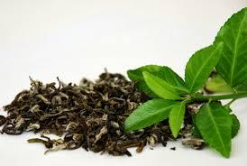 Teh Hijau 15 manfaat dan khasiat daun teh hijau untuk kesehatan khasiat