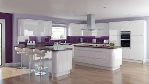 ideas for kitchen colours to paint kitchen astonishing cool violet kitchen colours beautiful