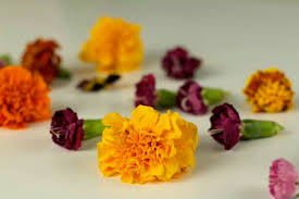 Where To Buy Edible Flowers - edible flower ice cubes