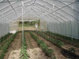 free images tool soil greenhouse green house conservatory