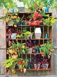 vertical gardening quarto homes